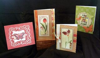 Tulips & butterflies